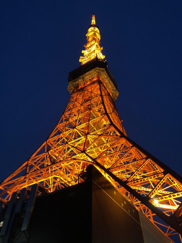 東京タワーの画像 p1_10
